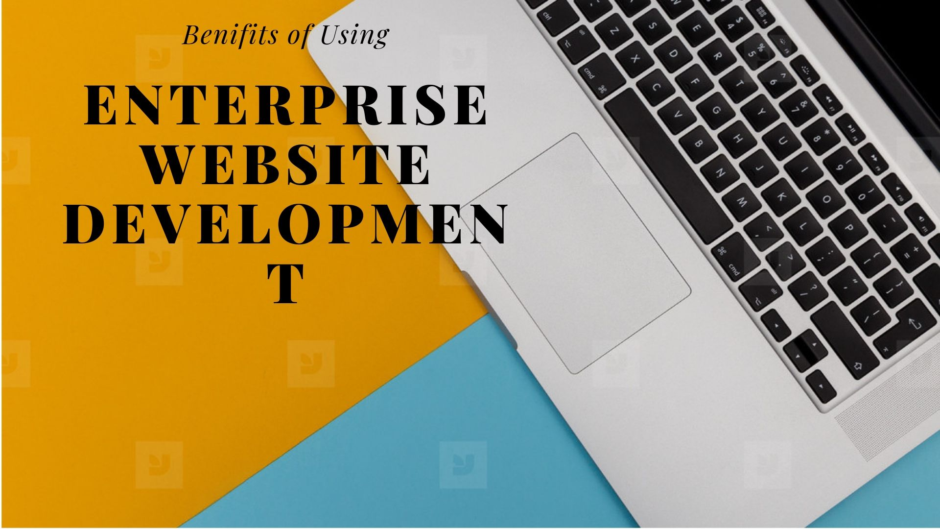Benifits of Using Enterprise Website Development